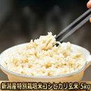 新潟産特別栽培米コシヒカリ玄米5kg