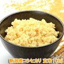 新潟産の美味しいコシヒカリ10kg玄米での発送
