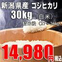新米 29年産 新潟産 コシヒカリ 【白米 30kg】(精米後は27〜28kg)10kg×3袋での発送 送料無料 一等米 【産地直送】白米 お取り寄せ