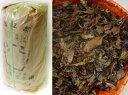 京のお番茶(ほうじ番茶)・お徳用1kg袋入