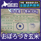 北海道産おぼろづき玄米(30Kg)【送料無料】【北海道米】【28年産】【1等米】