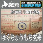 北海道産はくちょうもち玄米(30Kg)【送料無料】【一等米】【もち米】【平成28年産】
