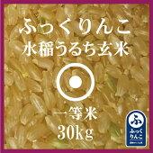 ふっくりんこ玄米30Kg送料無料産地サミット公認品1等米29年産北海道米食味ランキング特A受賞