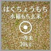 はくちょうもち玄米30kg送料無料一等米北海道産もち米29年産北海道米