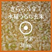 北海道産きらら397玄米30Kg送料無料【北海道米】【平成28年産】【一等米】
