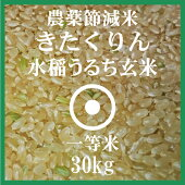 きたくりん玄米30Kg送料無料農薬節減米北海道産1等米28年産北海道米