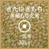 きたゆきもち玄米30Kg送料無料一等米北海道産もち米29年産北海道米