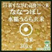 減農薬ななつぼし玄米30Kg送料無料北海道米1等米北海道産29年産JA新すながわ特別栽培米高度クリーン米
