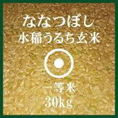 ななつぼし玄米30Kg送料無料1等米北海道米食味ランキング特A受賞