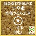 減農薬 特別栽培米 つや姫 玄米 30Kg 山形県産 一等米 29年産 庄内米 送料無料 やまがた特別栽培農産物認証