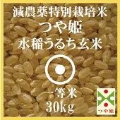 やまがた特別栽培農産物認証減農薬特別栽培米山形県産つや姫玄米(30Kg)