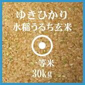 北海道産ゆきひかり玄米30Kg送料無料【一等米】【北海道米】【平成28年産】
