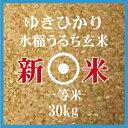 新米 ゆきひかり 玄米 30Kg 送料無料 北海道産 一等米 北海道米 29年産