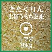 きたくりん玄米30Kg送料無料北海道産1等米北海道米