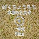令和元年産 はくちょうもち 玄米 30kg 一等米 北海道産 もち米 糯 北海道米