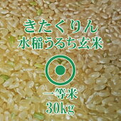 きたくりん玄米30Kg