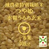 減農薬特別栽培米つや姫玄米