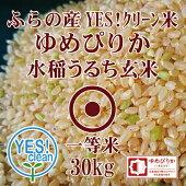 JAふらのゆめぴりか玄米30KgYES!クリーン米