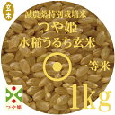 お試し玄米 令和2年産 つや姫 玄米 1Kg 減農薬 特別栽培米 山形県産 一等米 やまがた特別栽培農産物認証 メール便 送料無料