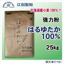 北海道産 強力粉 はるゆたか 100% 25kg (はるゆたかストレート) 国産 パン用 小麦粉 業務用 【江別製粉】