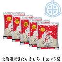 令和2年産 きたゆきもち 5kg (1kg×5袋) 送料無料 北海道産 もち米 北海道米