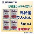 北海道産 ばれいしょ でんぷん (5kg×4) 送料無料 片栗粉 馬鈴薯 澱粉