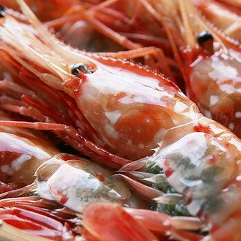 魚介類・水産加工品, エビ 500gA