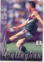 【送料無料】スポーツ メモリアル カード シグネチャーカード1998 afl select signature card 148 c callaghanfremantle