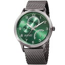 【送料無料】mens august steiner as8230gn 24 hour indicator date steel mesh bracelet watch