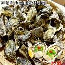 舞鶴産 冷凍 殻付き牡蠣 加熱用 30個