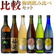 日本の梅酒 720ml 6本セット [梅酒セット/上等梅酒/竜峡梅酒/上等梅酒 黒糖/貴匠蔵梅酒/知覧茶梅酒/ゆず梅酒/ギフト 送料無料]
