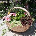 【FRP ファイバー鉢】ファイバー鉢2【園芸 ガーデニング Gardening プランター 鉢 FRP鉢 植木鉢】【取っ手つき オシャレ】【NP後払いOK】