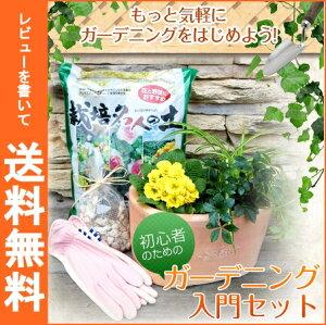 【レビューで送料無料】届いたその日に気軽にガーデニング☆ガーデニング入門セット【Gardening テラコッタ鉢・花苗・栽培土・ガーデン手袋】