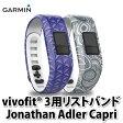 ガーミン リストバンド vivofit 3用リストバンド Jonathan Adler Capri [1245256] 【2色セット】【フィットネスバンド】