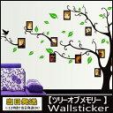 送料無料 ウォールステッカー 木と鳥 写真枠 フォトフレーム 北欧 グ...