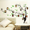ウォールステッカー 木と鳥 写真枠 フォトフレーム 北欧 グリーン リ...