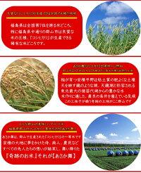 コシヒカリあさか舞5kg×2袋白米10kg福島県29年産送料無料特A一等米米