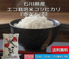「加賀百万石赤とんぼ米こしひかり」白米10kg・30年産新米・石川県産・減農薬