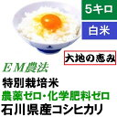 【送料無料】無農薬 白米「大地の恵み」5kg EM農法 無農薬栽培米 ...
