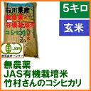 送料無料 無農薬 有機栽培米《JAS》玄米 5kg「竹村さんのこしひかり」令和元年産 新米 (有機・有機米・オーガニック玄米 等販売)