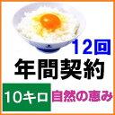 【年間契約】【送料無料】「自然農法米 こしひかり 自然の恵み」10kg...