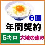 【年間契約】「無農薬米 大地の恵み」5kg・6回発送令和元年産新米・EM農法・無農薬栽培米こしひかり[一括払い](定期購入)新米は9月30日からの出荷になります。