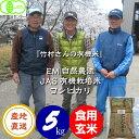 送料無料 無農薬 有機栽培米《JAS》玄米 5kg「竹村さんのこしひかり」令和2年産 新米 (有機・有機米・オーガニック玄米 等販売)