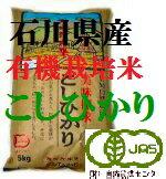【年間契約定期購入】「土の詩」20kg・3回発送/有機栽培米《JAS》28-29年産新米・EM農法・こしひかり(無農薬/有機 米)「一括払い」(定期購入):ほんだ農場