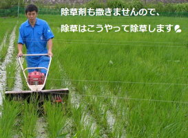 【年間契約】【送料無料】「水の精」10kg・6回発送有機栽培米《JAS》30年産新米・EM農法・こしひかり(無農薬/有機米)「一括払い」(定期購入送料:北海道、沖縄以外0円)新米は9月30日からの出荷になります。