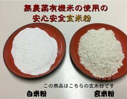 【送料無料】無農薬・有機栽培米の玄米を粉に挽いた玄米粉(米粉)500g(メール便)「玄米粉、有機玄米粉、米粉、無農薬米粉)