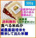 【送料無料】食べる 健康米ぬか「焙煎炒りぬか 素肌美人」500gメール便「自然農法 自然の恵み…