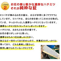 国産はちみつ(純粋)1kg2本セット★はちみつ生産直売★【蜂蜜国産】