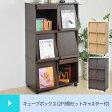 フラップキューブボックス cube 2P 3個セット キャスター付き ( カラーボックス シェルフ 棚 ディスプレイラック 本棚 キューブボックス 収納家具 小物収納 送料無料 )