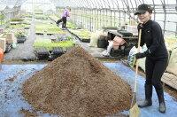 【当店農場生産】多肉&セダムの土15リットル入1袋☆多肉植物が元気に育つ!